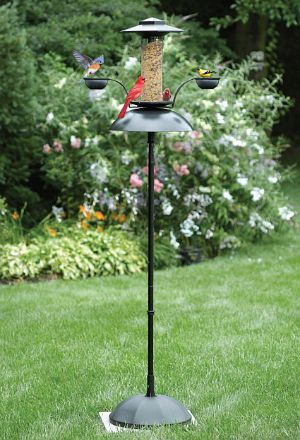 Effortless Oasis Feeder, Effortless