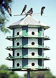 24 Compartment Purple Martin house - Complete - nothing else to buy