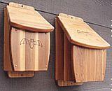 Bat Houses Woodworking Plans